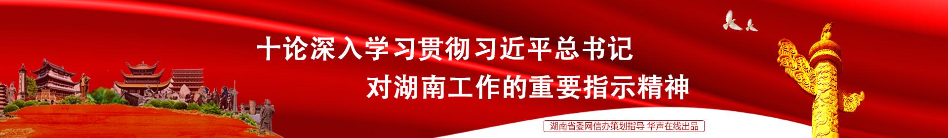 十论深入学习贯彻习近平总书记对湖南工作的重要指示精神