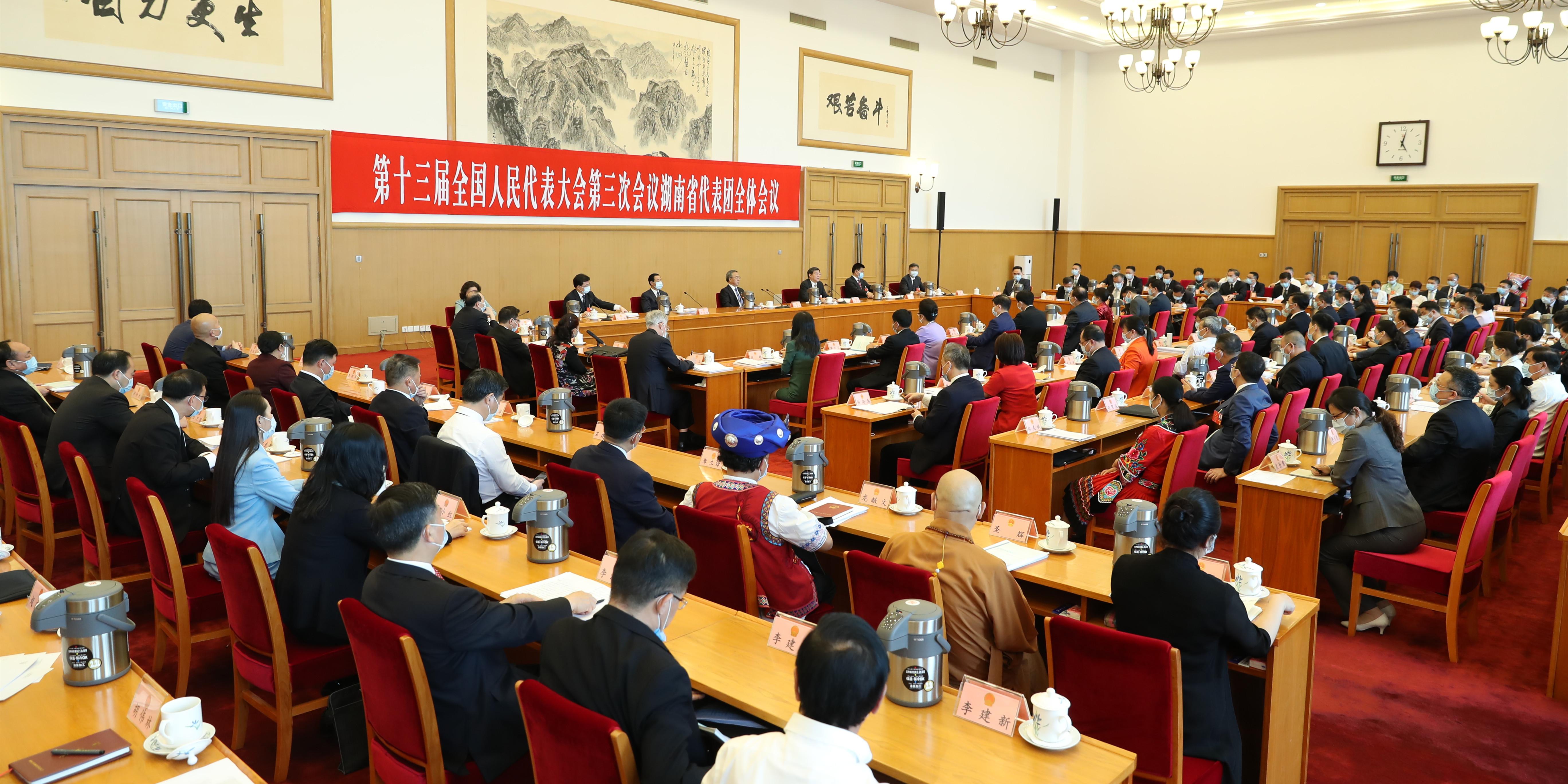 湖南代表团召开全体会议审议政府工作报告