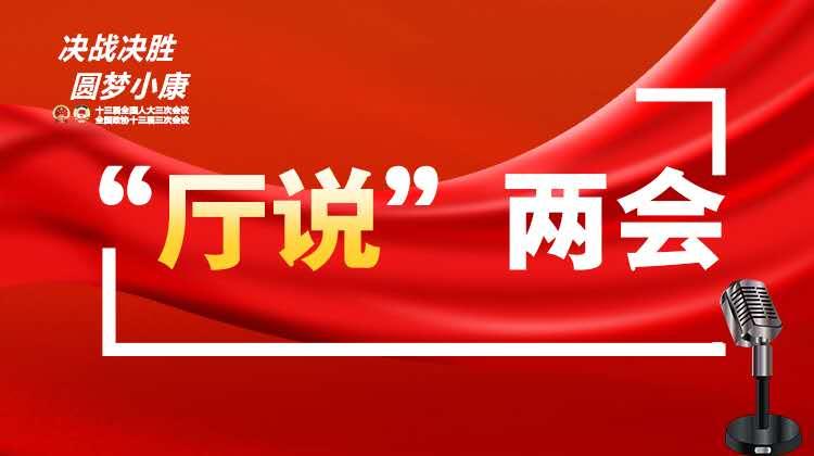 """【""""厅说""""两会】全国人大代表、省发改委主任胡伟林:为湖南经济社会发展争取最好结果"""