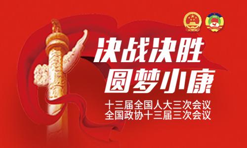 湖南代表团分组审议 央视全程网络直播