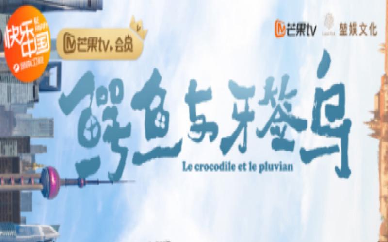 湖南首个影视剧网络侵犯知识产权案侦破始末