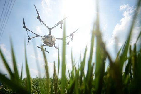 """无人机""""黑飞""""惊动空军 ,长沙开出无人机飞行首张行政罚单"""