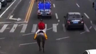 男子骑马飞奔上班被约谈 交警:有安全隐患