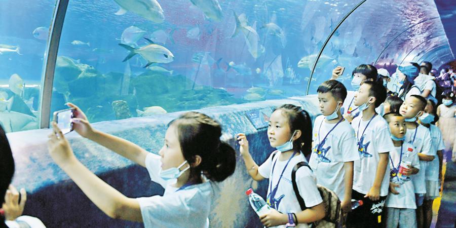 山区儿童圆梦海洋童话