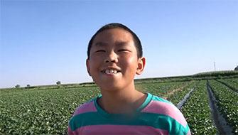 11岁男孩暑假化身摘瓜小能手 劳动的笑容太甜