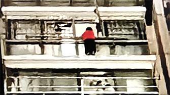 6岁男童爬窗台找家人 居民拉床单铺被子救援