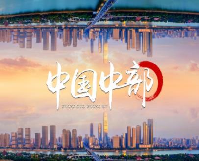 第二十二届中国中部(湖南)农业博览会宣传片