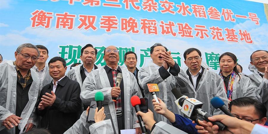 袁隆平团队双季稻亩产超1500公斤