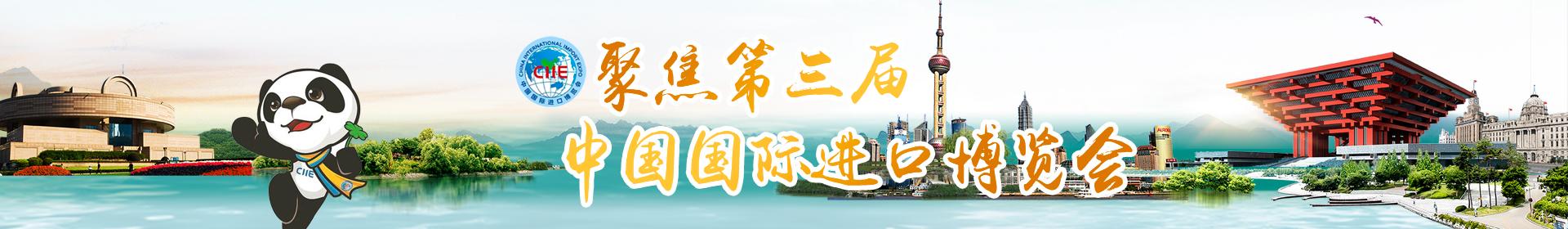 聚焦第三届中国国际进口博览会