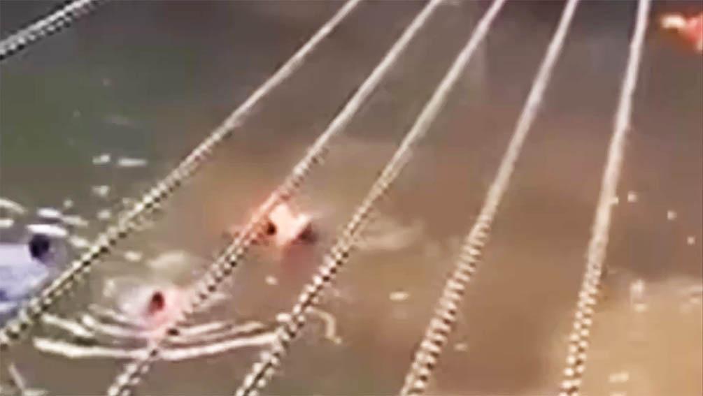 四川泸州一家公司组织员工拓训致3死1伤