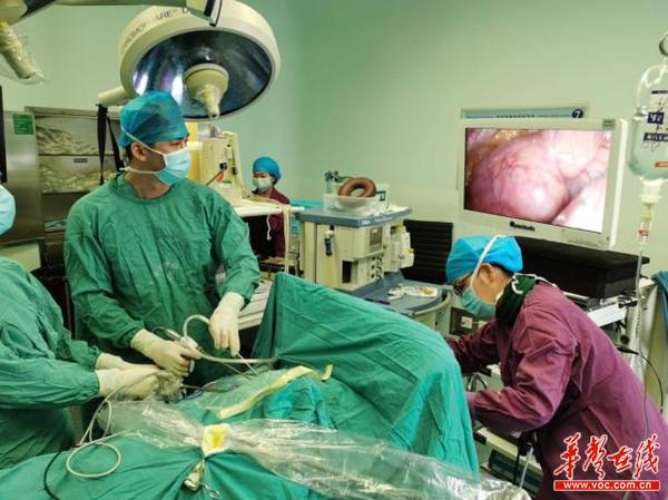甲状腺肿物生长10年大如柚子 医生微创手术巧取3斤重肿块