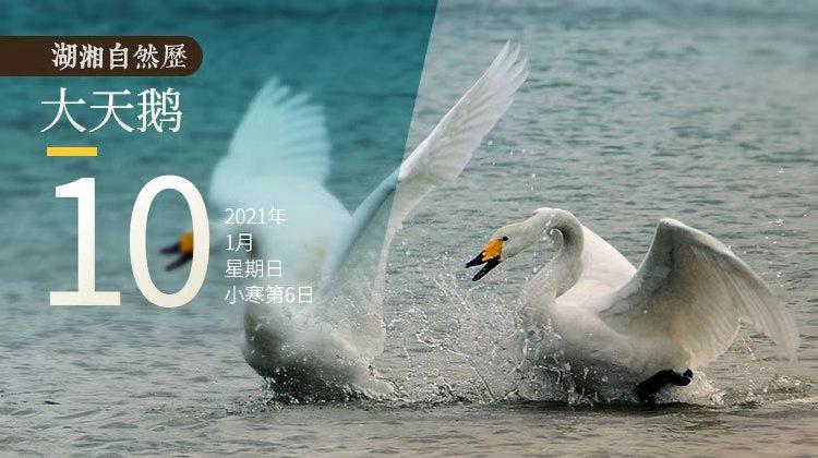 湖湘自然历丨它就是美好与骄傲本身