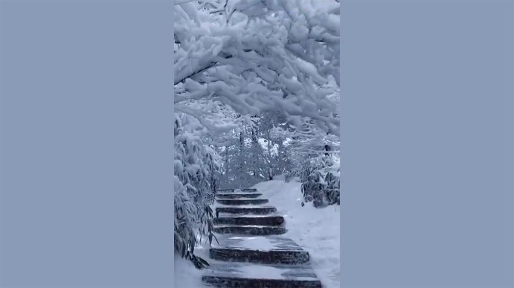 雪后黄山美成诗画仙境