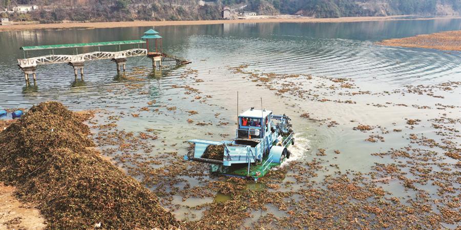 清洁水域 保护生态