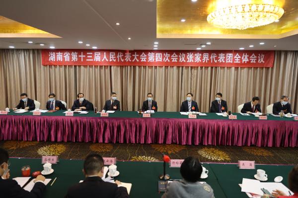 许达哲参加张家界代表团审议:在打造锦绣潇湘全域旅游品牌中当好龙头