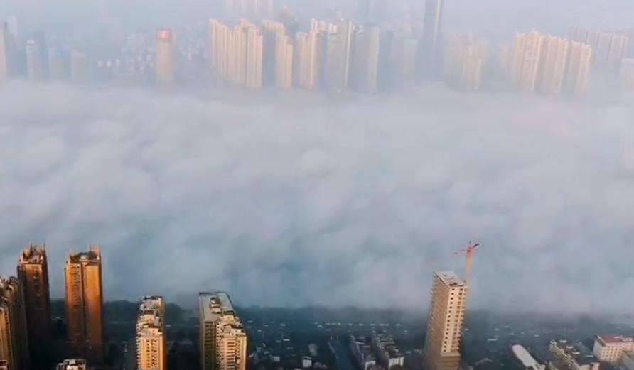视频 | 雾漫湘江上,人如云中游