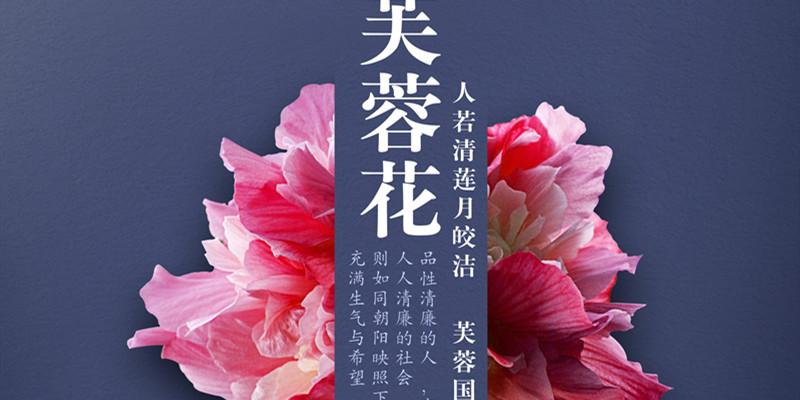 """""""欢乐中国节 廉政好家风""""廉政公益广告:芙蓉花"""