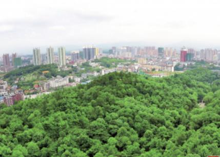 常德市去年新增绿地面积26000平方米