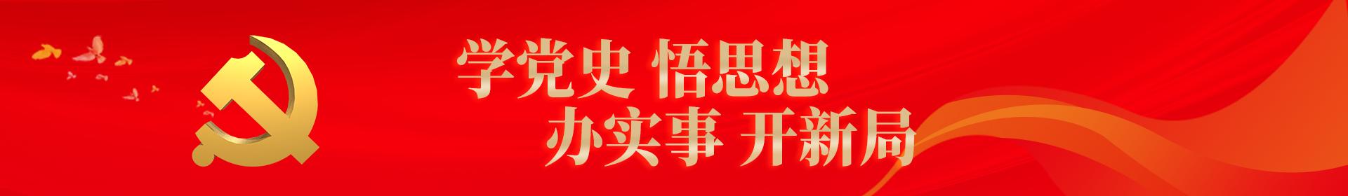 学党史 悟思想 办实事 开新局
