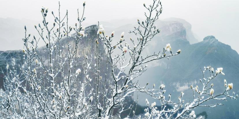 春雪纷飞天门山