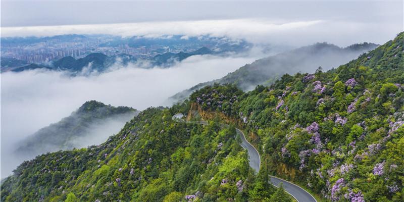 雨后道吾山 雾漫似仙境