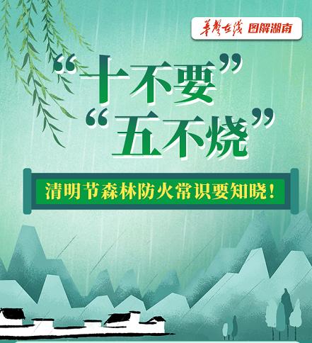 """""""十不要""""""""五不烧""""……清明节森林防火常识要知晓!"""