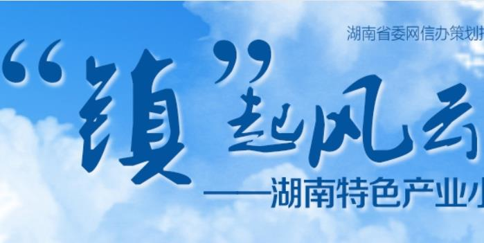 """""""镇""""起风云——湖南特色产业小镇巡礼"""