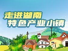 """农业小镇引领""""绿富美""""——湖南特色产业小镇建设观察(中)"""