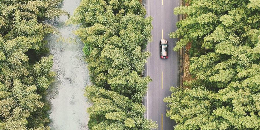 生态公路美如画