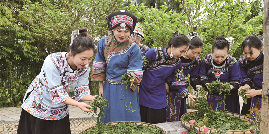 茶旅融合 振兴乡村