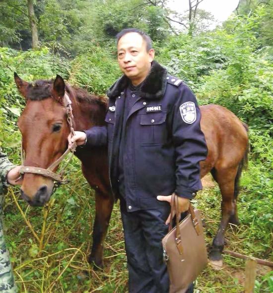 路見馬匹在鐵路線邊的草坡上溜達,鐵警將其牽回農戶家