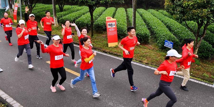 第七届长沙(国际)茶文化旅游节启动