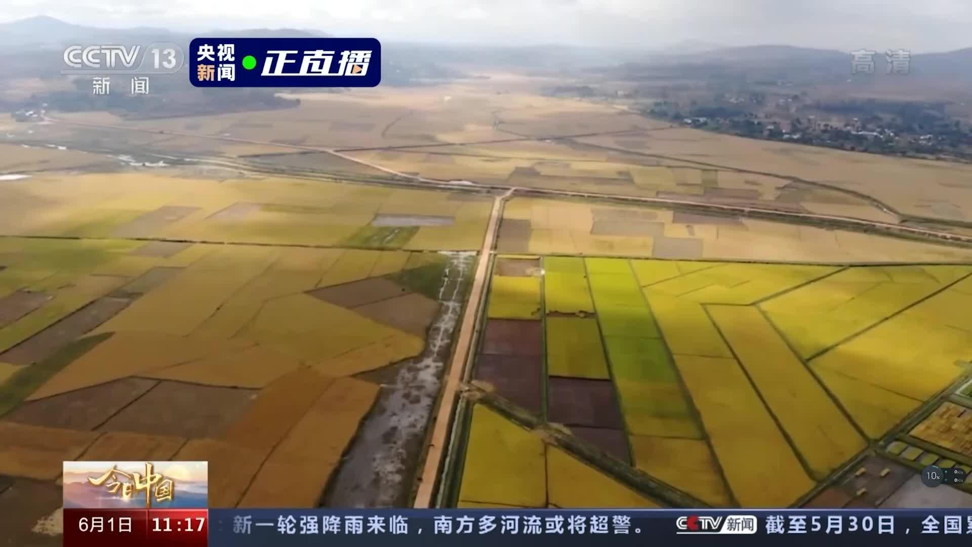 今日中国·湖南篇㉒丨丰收的喜悦