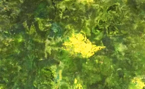 草木绿:粽香情浓话端午 世代儿女传忠孝