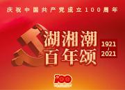 【湖湘潮 百年颂112】中非经贸博览会长期落户湖南:我省首个国际性对外开放平台