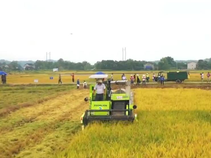 桃源:举行水稻机收减损技能大比武