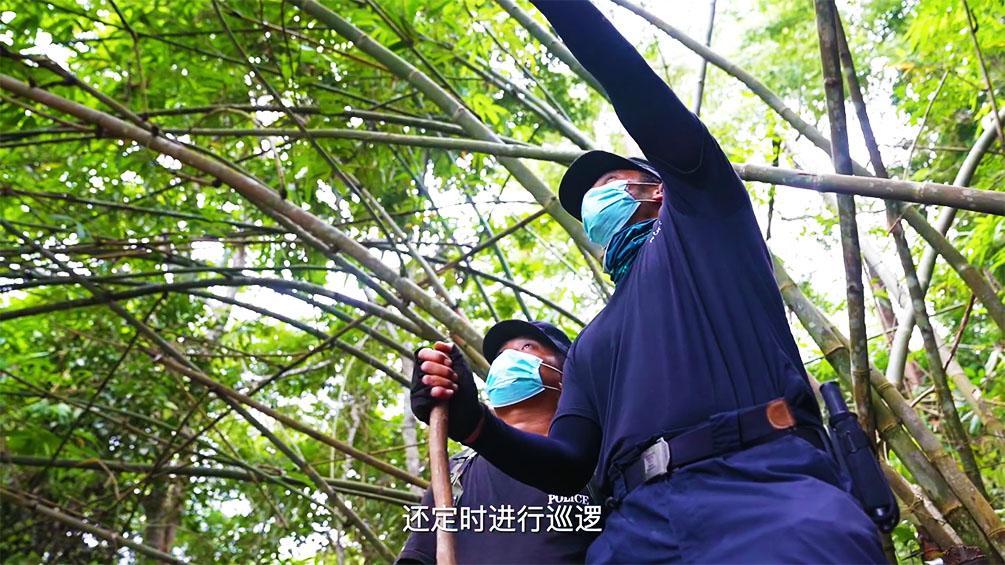 辛苦了!云南守边民警每天3万余步巡逻