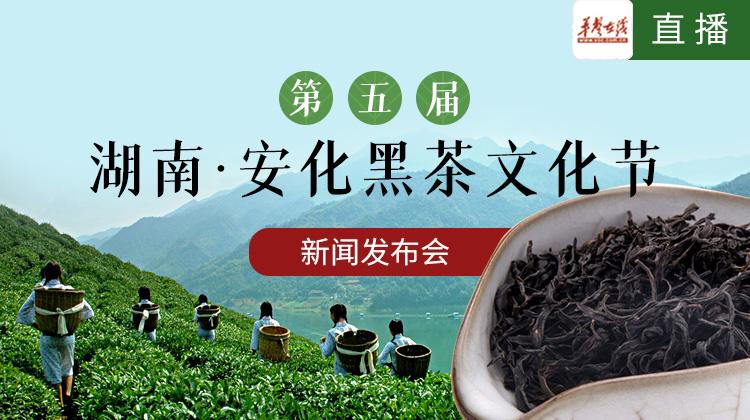 直播回顾>>第五届湖南·安化黑茶文化节新闻发布会
