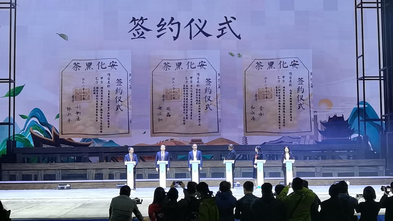 第五届湖南·安化黑茶文化节开幕,百亿元项目落户安化