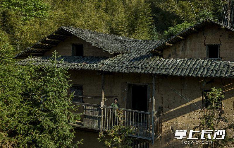独居在山上的日子,张福继的生活始终围绕着这栋祖屋,砍柴喂鸡种菜做饭,偶尔在阳台发发呆,拉一拉二胡。 图片均为长沙晚报全媒体记者 李锋 摄影报道