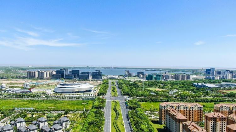 """【行走自贸区】""""稳外资、稳外贸"""" 上海自贸区临港新片区从实事做起"""